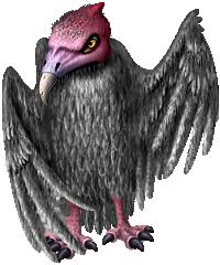 bird_m.png